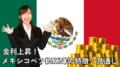 メキシコペソ(MXN)の特徴・見通し
