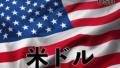 米ドル(USD)